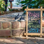 Catalytic Camera Photo Tallahassee Family Photographer Maclay Gardens new parents announcing upcoming birth