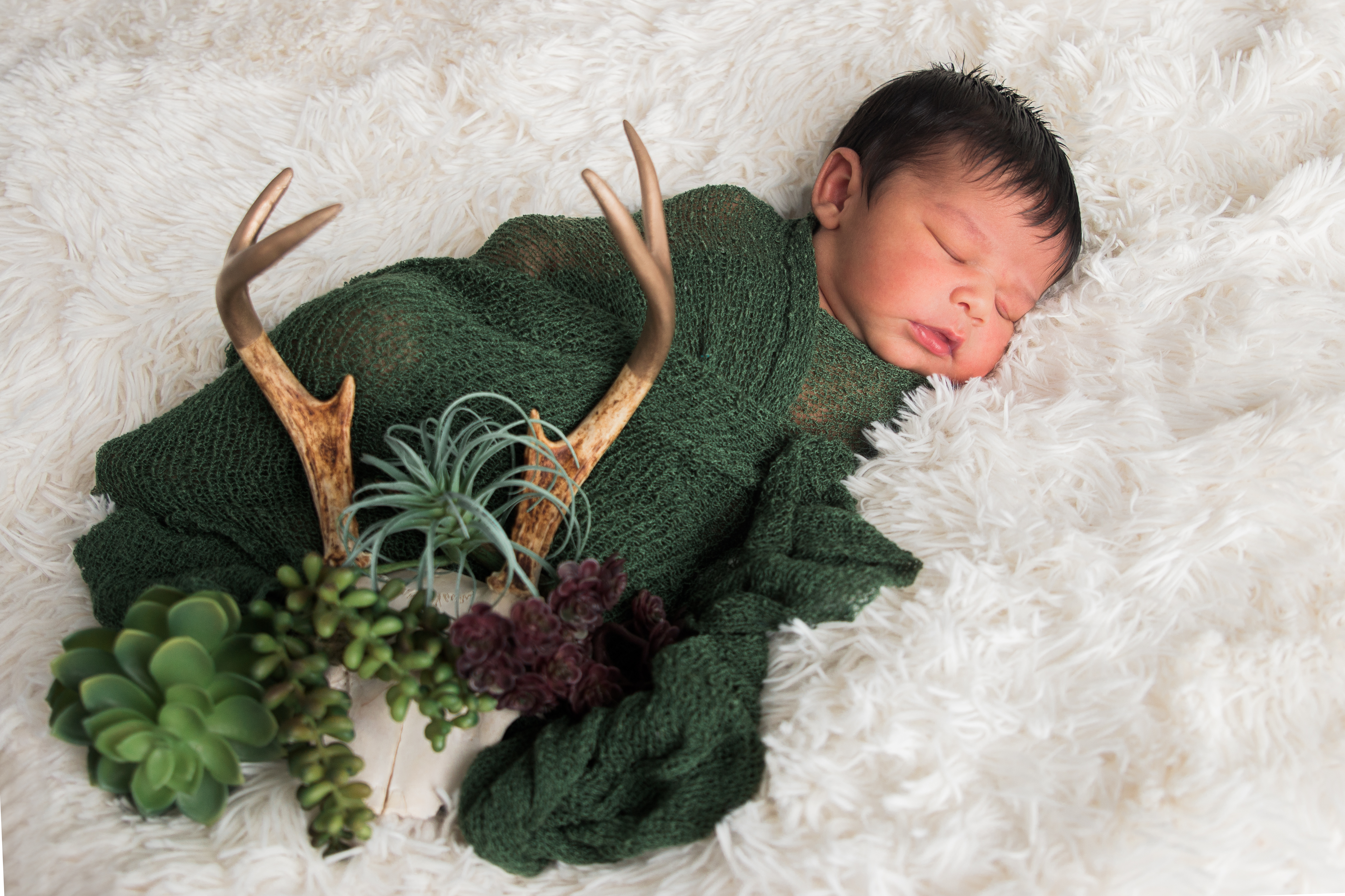 Newborn photographer Tallahassee Baby with antlers and succlants